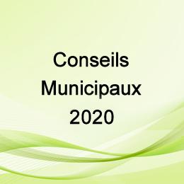 LES CONSEILS MUNICIPAUX 2020