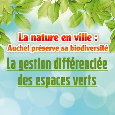 La gestion différenciée des espaces verts